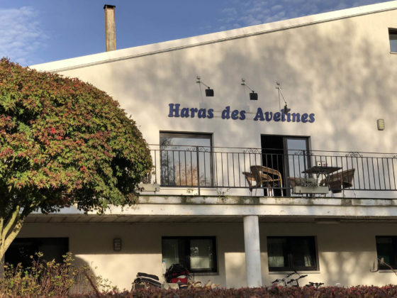 Haras des Avelines